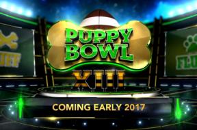 puppy bowl xiii logo