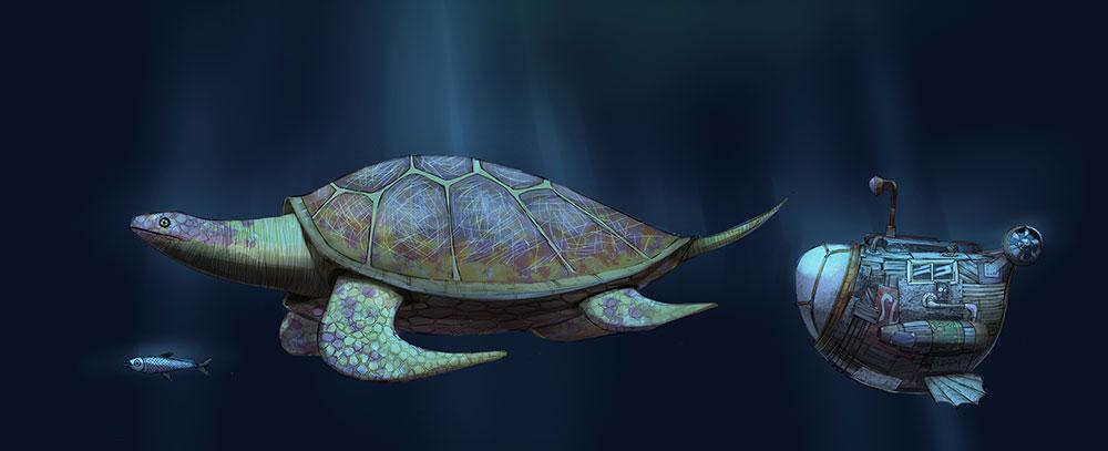 turtle in arden's wake