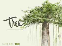 tree vr experience
