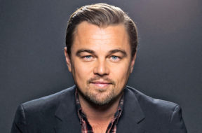Leonardo DiCaprio mindmaze
