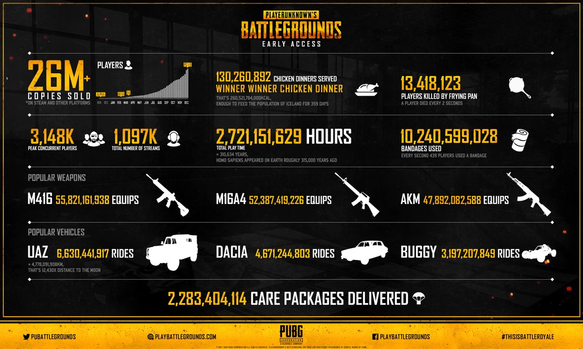 how to understand pubg stats