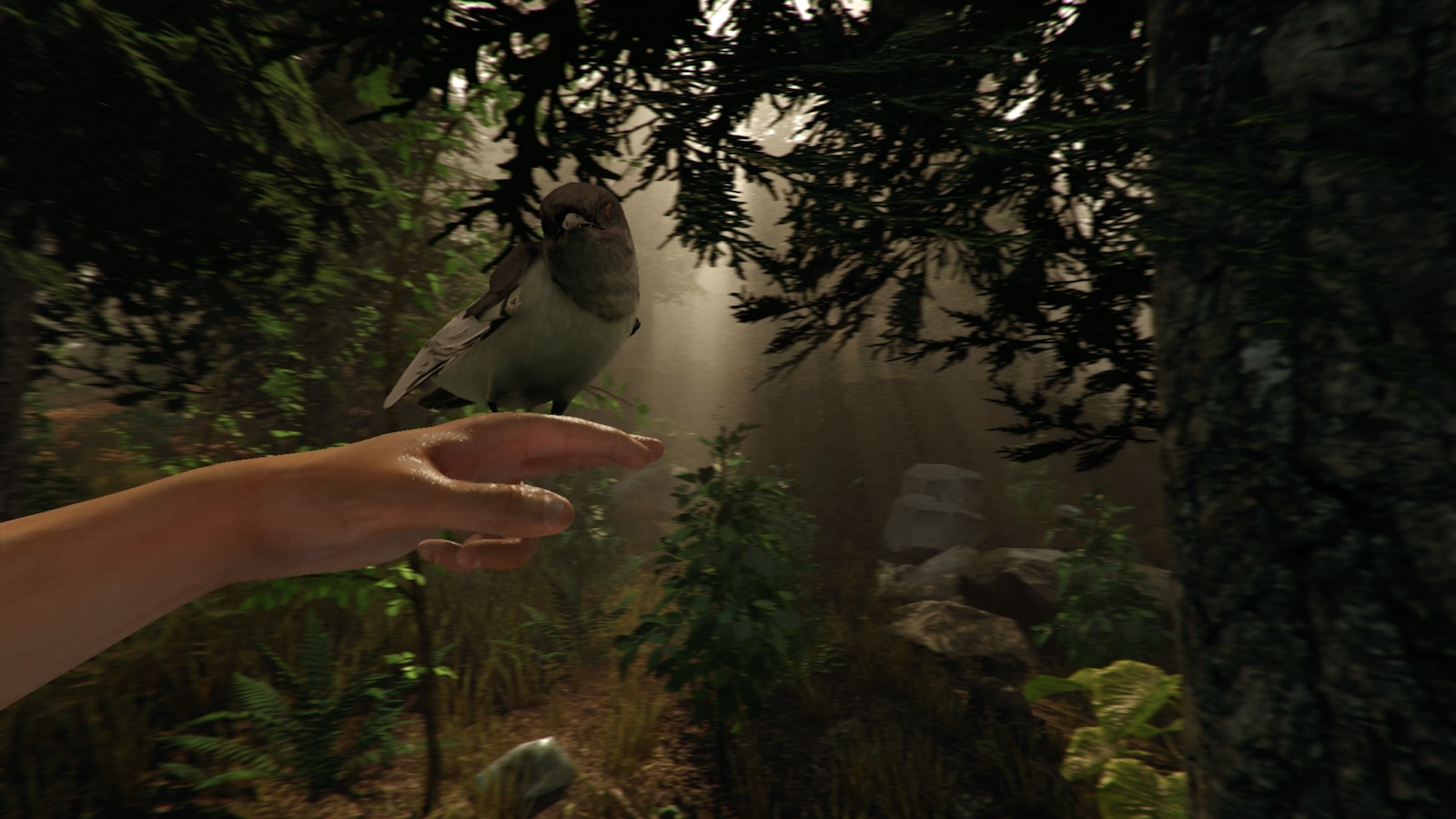 The Forest Will Finally Be Getting A VR Game Mode